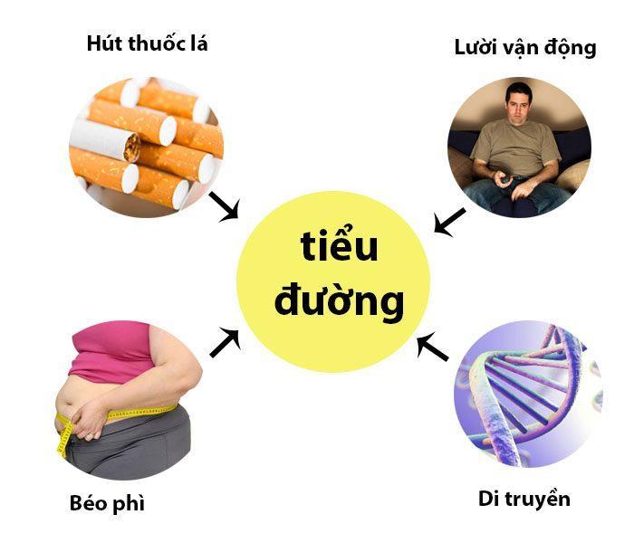 nguyên nhân tiểu đường